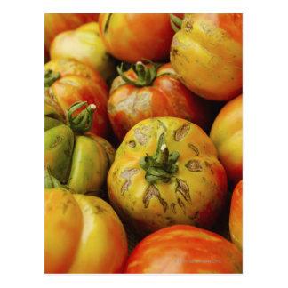 Estudio tirado de los tomates de la herencia postal