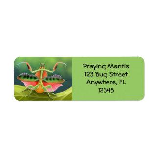 Etiqueta africana de la mantis religiosa etiqueta de remitente