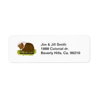 Etiqueta Amo mi conejillo de Indias