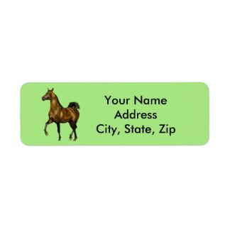 Etiqueta Caballo del árabe de la bahía