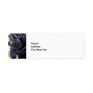 Etiqueta Caballo negro 384