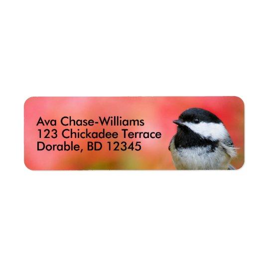 Etiqueta Chickadee Negro-Capsulado lindo en el manzano