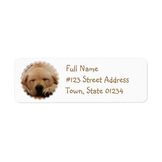 Etiqueta de correo del golden retriever el dormir etiquetas de remite