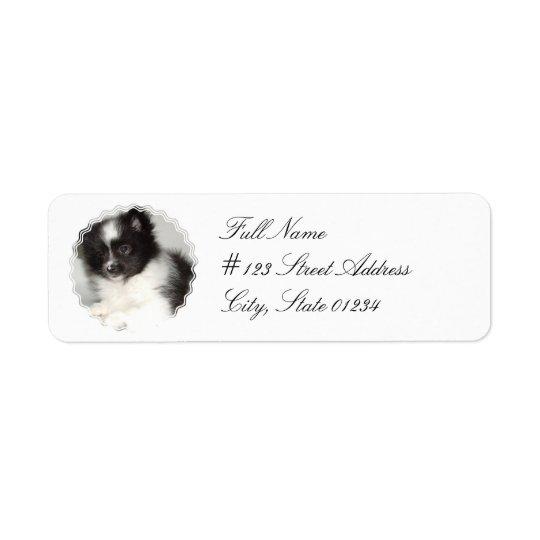 Etiqueta de correo del perro de Pomeranian del