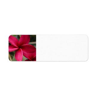 Etiqueta de correo hawaiana de la flor etiqueta de remite