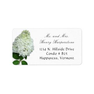Etiqueta de dirección floral del Hydrangea blanco