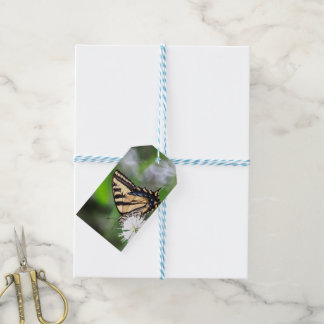 Etiqueta del cumpleaños de la mariposa etiquetas para regalos