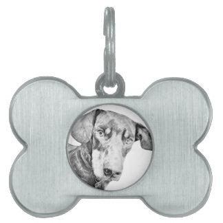 Etiqueta del Dachshund Placa De Mascota