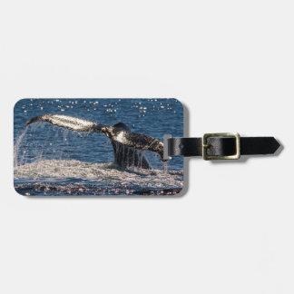 Etiqueta del equipaje de la ballena de Humback -
