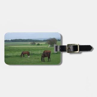 etiqueta del equipaje de los amantes del caballo