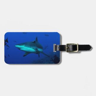 Etiqueta del equipaje del tiburón del filón
