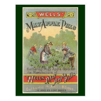 Etiqueta del producto del vintage, píldoras de postal
