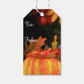 Etiqueta del regalo de la calabaza de la acción de etiquetas para regalos
