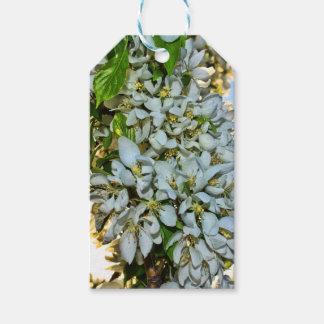 Etiqueta del regalo de la flor