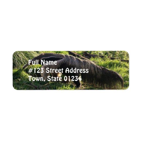 Etiqueta del remite del Anteater gigante Etiqueta De Remite
