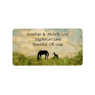 Etiqueta Dirección hermosa del caballo de la yegua y del