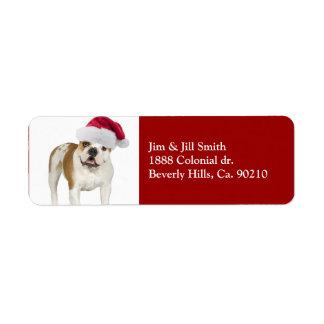 Etiqueta Dogo en navidad del gorra de Santa