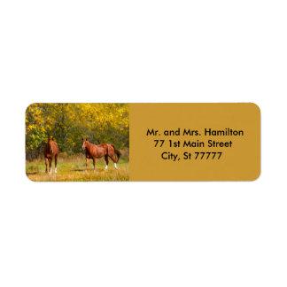 Etiqueta Dos caballos de la castaña del otoño