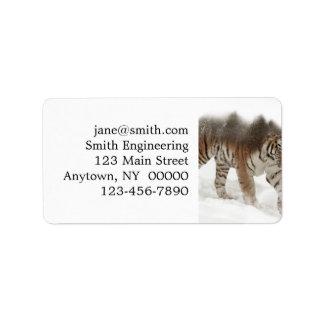 Etiqueta Exposición-fauna tigre-Tigre-doble siberiana