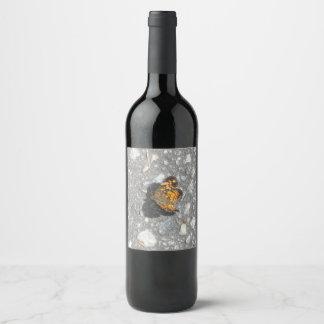 Etiqueta Para Botella De Vino Mariposa de monarca bonita