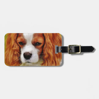 Etiqueta Para Maletas Animal de mascota divertido arrogante del perro de