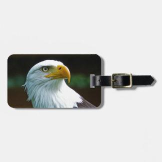 Etiqueta Para Maletas Cabeza de Eagle calvo