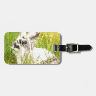 Etiqueta Para Maletas Conejo blanco y negro