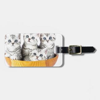 Etiqueta Para Maletas Cuatro gatos jovenes que se sientan en cuenco de