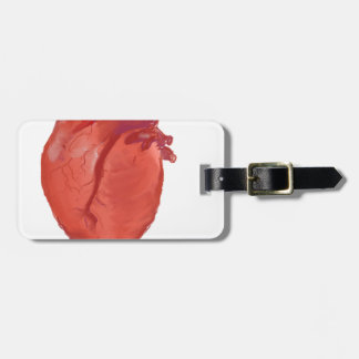 Etiqueta Para Maletas Diseño de la anatomía del corazón