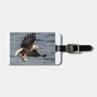 Etiqueta Para Maletas Eagle calvo que coge la comida