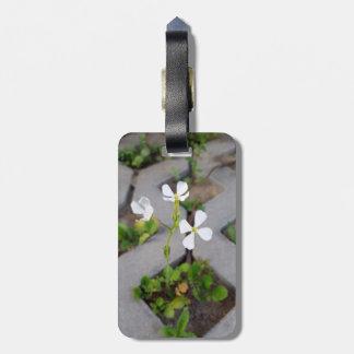 Etiqueta Para Maletas Flor en el estacionamiento