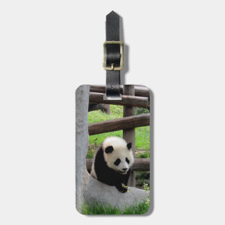 Etiqueta Para Maletas Fotografía de la panda - Personalizable