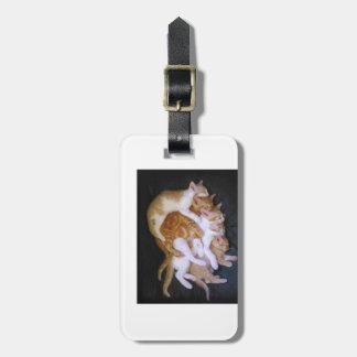 Etiqueta Para Maletas gatos de abrazo