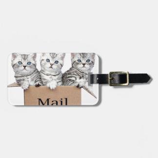 Etiqueta Para Maletas Gatos jovenes en caja de cartón con el correo de