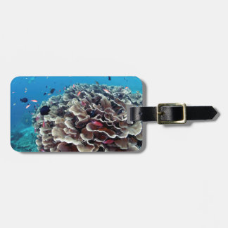 Etiqueta Para Maletas Isla coralina