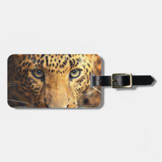 Etiqueta Para Maletas Leopardo manchado negro de Brown