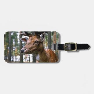 Etiqueta Para Maletas Los ciervos de Brown acercan a árboles