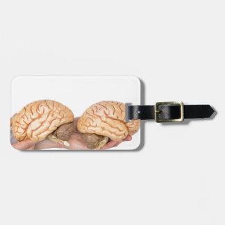 Etiqueta Para Maletas Manos que sostienen el cerebro humano modelo en