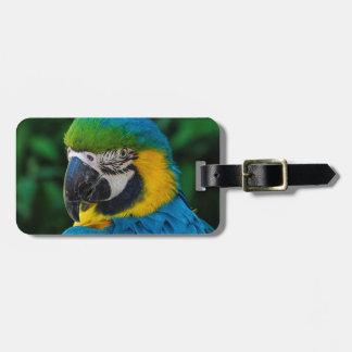 Etiqueta Para Maletas Pájaro azul y amarillo