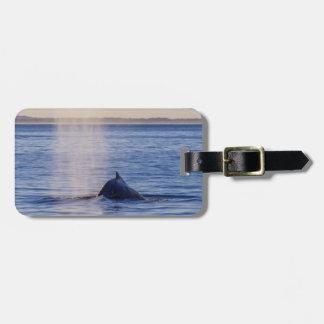 Etiqueta Para Maletas Paraíso de las personas que practica surf de la