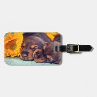 Etiqueta Para Maletas Perritos adorables el dormir Doxen