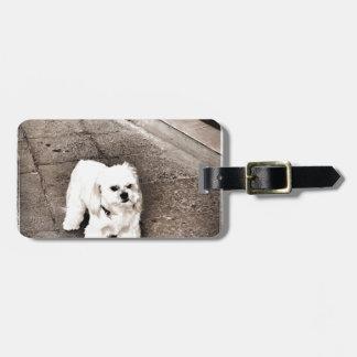 Etiqueta Para Maletas perro malhumorado fullsizeoutput_c75