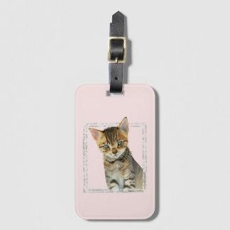 Etiqueta Para Maletas Pintura del gatito del Tabby con el falso marco de