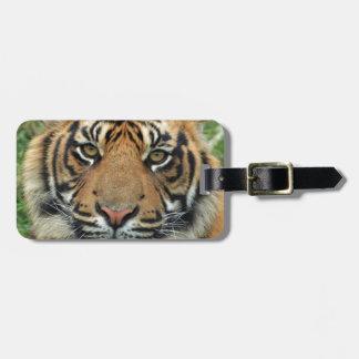 Etiqueta Para Maletas Tigre adulto