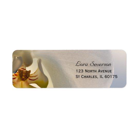 Etiqueta Remite de la elegancia blanca de la orquídea