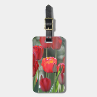 Etiqueta roja del equipaje de los tulipanes