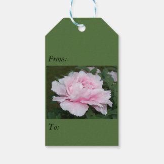 Etiqueta rosa clara de la flor del Peony Etiquetas Para Regalos