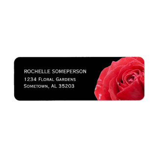 Etiqueta Rosa rojo en negro