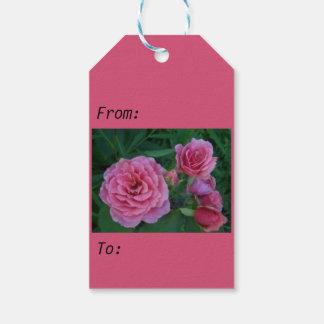 Etiqueta rosada de los rosas etiquetas para regalos