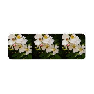 Etiqueta temática de los Wildflowers blancos Etiqueta De Remite